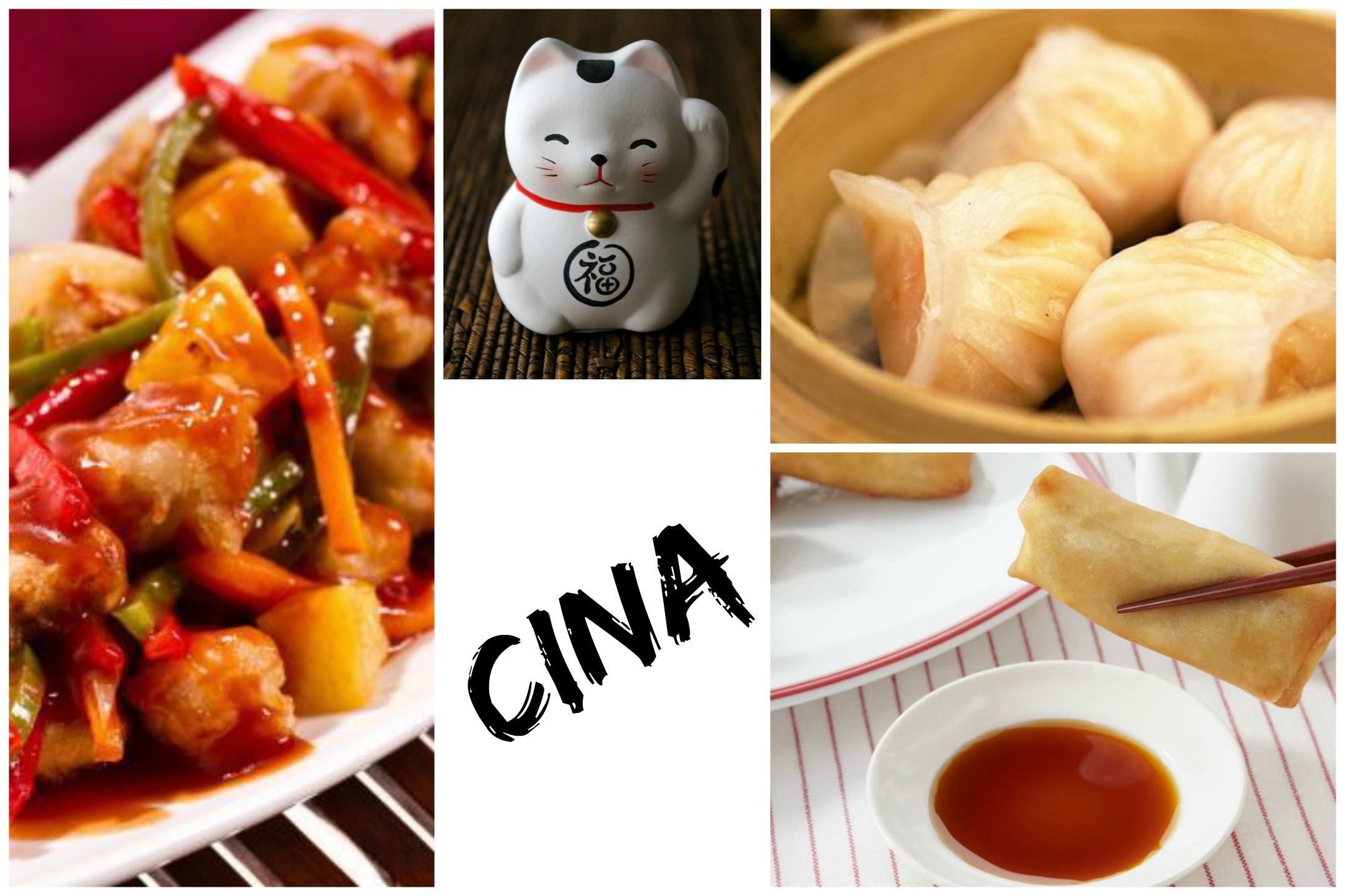Il giro del mondo fatelo tra i ristoranti di torino for Cibo cinese menu