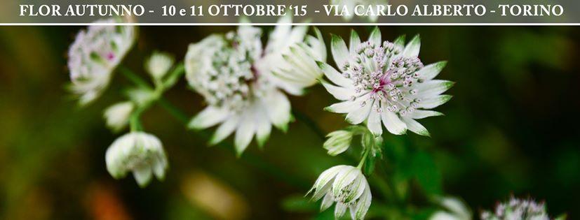 Flor Torino Ottobre 2015