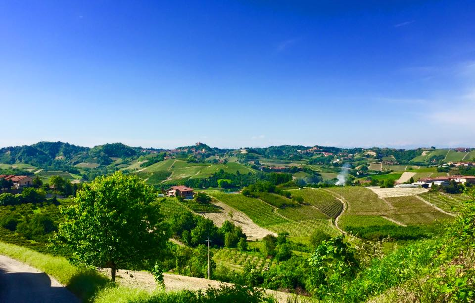 Roero territorio Piemonte viticoltura vino vigne