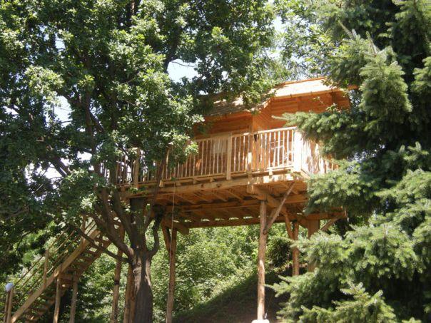 casa sull'albero La Quercia Manta natura legno architettura