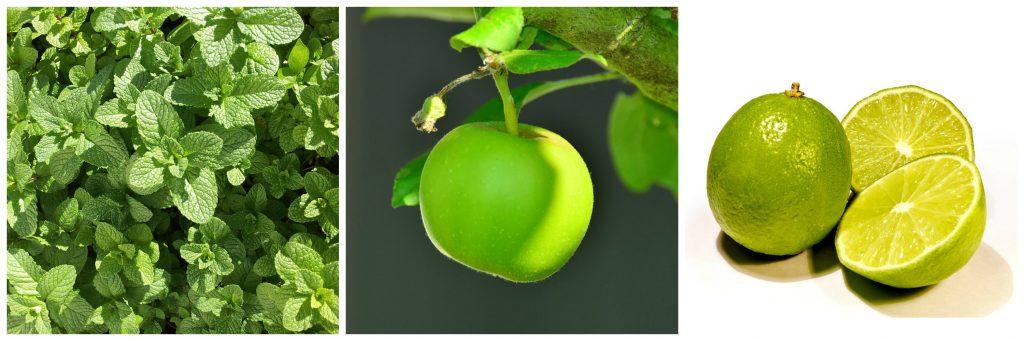 Lime Mela verde Menta
